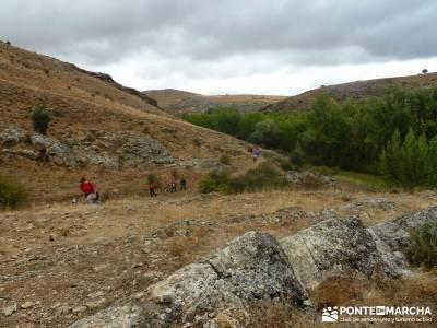 Yacimiento celtíbero de Tiermes y Hoz de Ligos;cañadas reales foro trekking